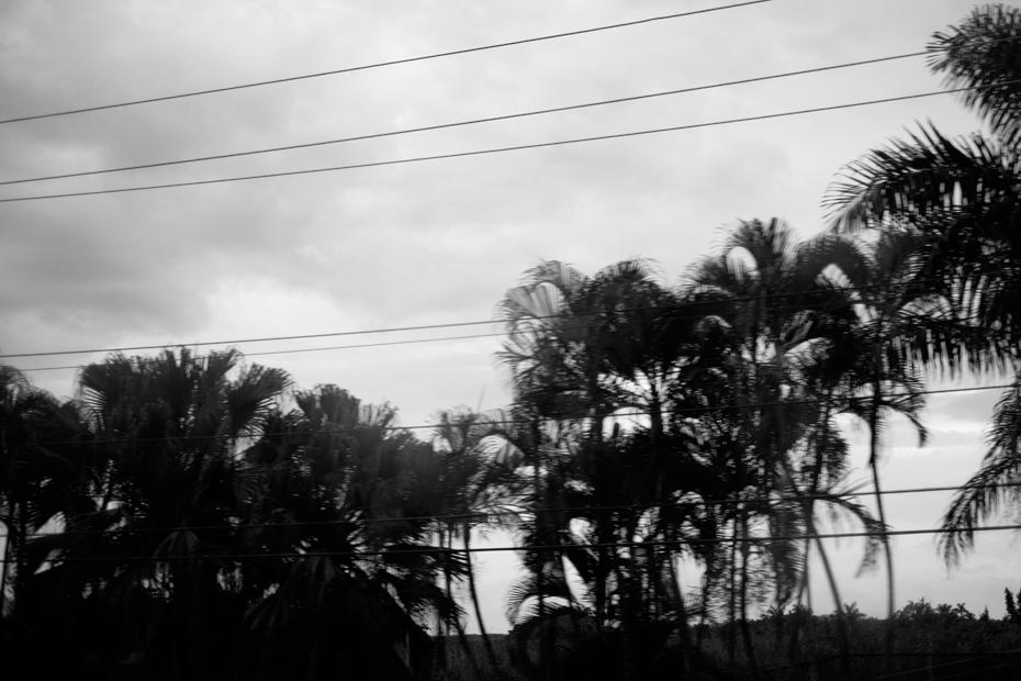 001-jamiaca